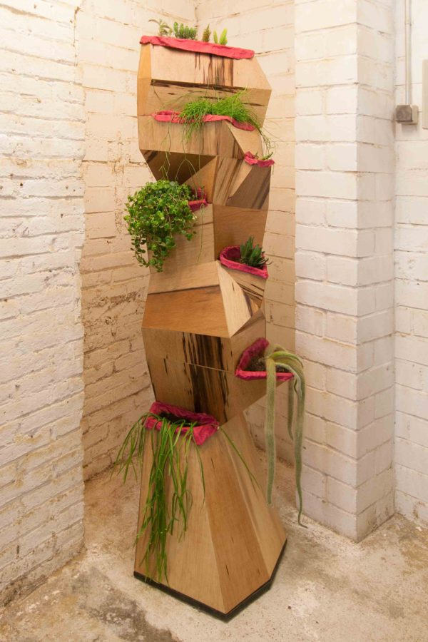 7bocas faceted wooden sculpture with magenta interior, filled with plants