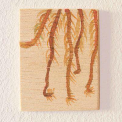 Roots detail of a pitcher plant drawn on plywood. Detalle de la raíces de una planta insectívora dibujada sobre contrachapado.